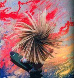 Foto arte tirada do livro Dogtown